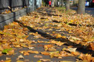 Foto: zwiboe / pixelio.de